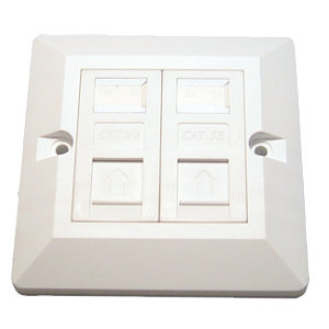 CAT 5E DUAL PORT FACEPLATE + 2 X MODULES